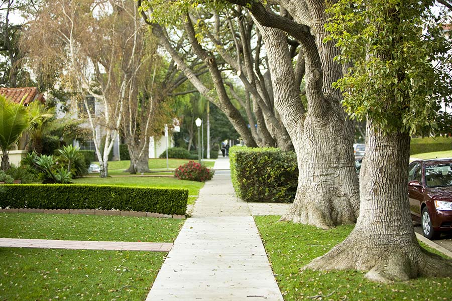 Glenview Neighborhood Guide